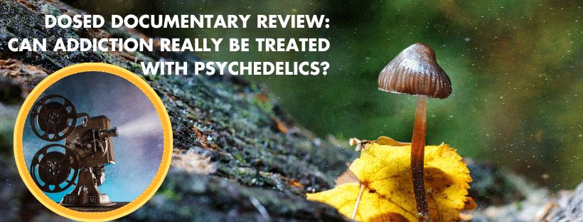 Treating addiction with pscyhadelics